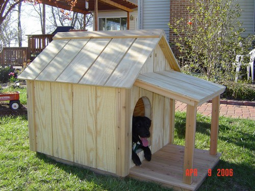 The Sparky 1 dog house