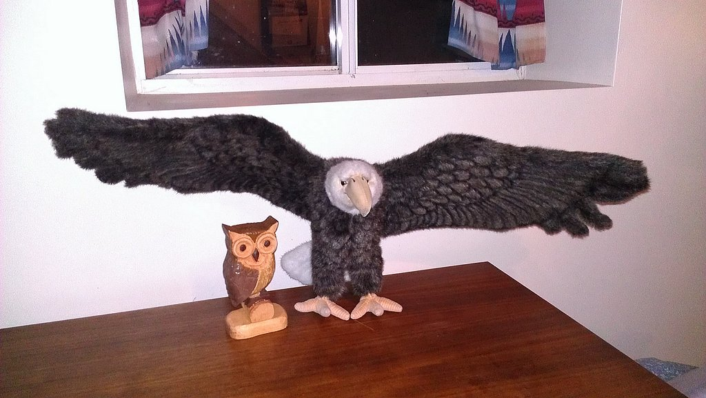 My carved owl with a bald eagle friend