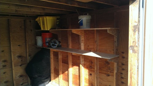 Shed shelves made from left-over T1-11 panels used for doors