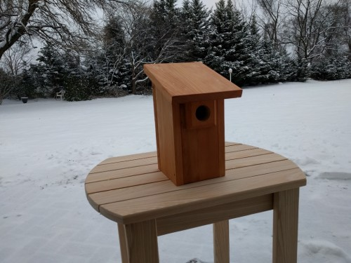 "Bluebird house with 1-1/2"" diameter double thickness hole"